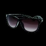 Sunglasses Black Wayfarer
