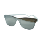 Sunglasses Grey Clear Plastic